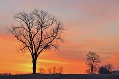 Lever de soleil rural images libres de droits