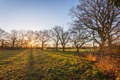 Lever de soleil rural Photographie stock