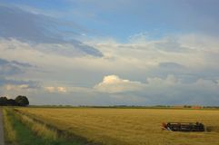 Lever de soleil rural de voilet image stock