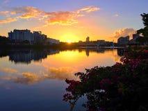 Lever de soleil Southbank de Brisbane Photographie stock libre de droits