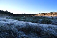 Lever de soleil sur des plaines de Horton Photographie stock