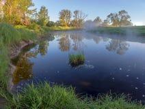 Lever de soleil sur la rivière de forêt Photographie stock libre de droits