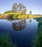 Lever de soleil sur la rivière de forêt Photo libre de droits