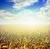 Lever de soleil sur la zone Images libres de droits