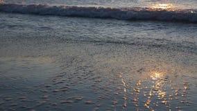 Lever de soleil sur le bord de la mer Vagues dans le mouvement lent banque de vidéos