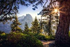 Lever de soleil sur le demi dôme dans la forêt Photographie stock