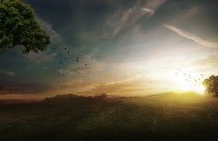 Lever de soleil sur un champ Images stock