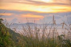 Lever de soleil sur un champ brumeux photos stock