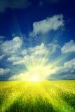 Lever de soleil sur une zone de blé images stock