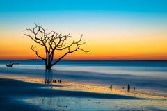 Lever de soleil surréaliste à la baie de botanique Photo stock