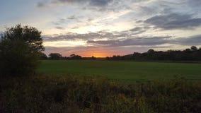 Lever de soleil tôt au-dessus de champ vert Images libres de droits