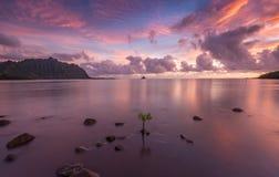 Lever de soleil toujours du côté est d'Oahu, Hawaï photographie stock
