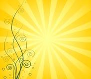 Lever de soleil vert de fleur illustration libre de droits