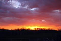 Lever de soleil vibrant de prairie Images stock