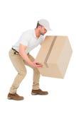 Leveransman som huka sig ned, medan välja kartongen Arkivbild