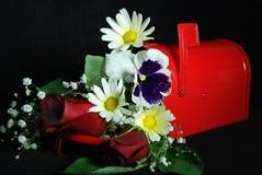 leveransspecial Royaltyfria Foton