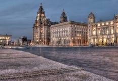 Leverbyggnader Liverpool royaltyfria foton