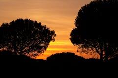 Levers de soleil et coucher du soleil Image libre de droits