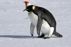 Levez-vous pour Noël Photos stock