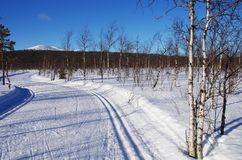 Finland Lapland. Cross country skiing at Levi Lapland, Finland Stock Photo