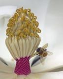 Levier d'abeille de travailleur Photographie stock