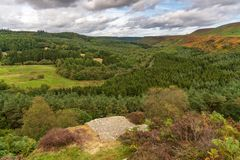 Levisham hed, North Yorkshire, England, UK royaltyfri fotografi