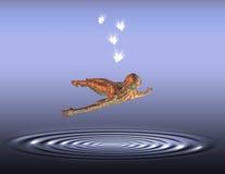 Levitação Imagem de Stock Royalty Free