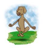Levitating dog. Humor illustration of meditating levitating dog Royalty Free Stock Photos