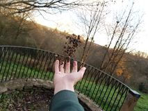 levitazione immagini stock libere da diritti