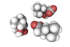 levocarnitine,维生素B11分子模型  原子代表作为球形用常规颜色编码:氢 库存例证