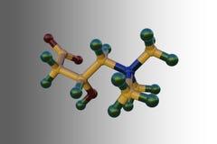 levocarnitine,L肉毒碱,维生素B11分子模型  E 3d?? 库存例证