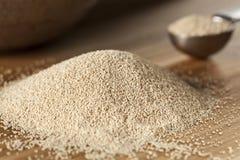Levure crue organique pour le pain de cuisson Photo stock