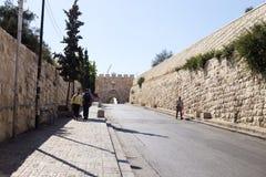 Lew brama, Stara miasto ściana, Jerozolima, Izrael Zdjęcie Royalty Free
