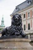 lew ciemniuteńki Obrazy Royalty Free
