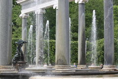 Lew kaskada odróżnia się od innych fontann w Peterhof, Rosja Obraz Royalty Free