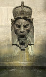 Lew królewska Głowa zdjęcie stock