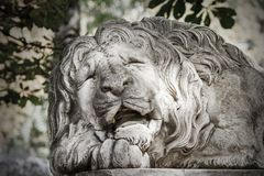 Lew rzeźba, zamyka up zdjęcie stock