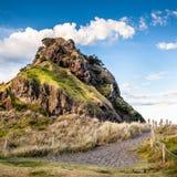 Lew skała (Piha plaża, Nowa Zelandia) Obraz Royalty Free