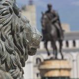 Lew statua, Skopje, Macedonia obrazy stock