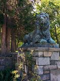 Lew statua w lecie Fotografia Royalty Free