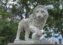 Lew statua w Odessa, Ukraina zdjęcia royalty free