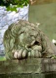 Lew statua w ulicach Lviv, Ukraina Obraz Stock