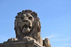 Lew w Łańcuszkowym moscie Zdjęcia Stock