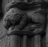 Lew z twarzą znikał czasem na kapitale Obrazy Stock