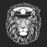 lew zwierząt na dziki drapieżne Wektorowy druk dla dzieci Capitan, pirata zwierzę Odważny żeglarz Projekt dla dziecina, szkoła dz royalty ilustracja