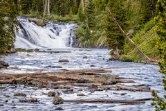 Lewis Falls, parque nacional de Yellowstone Foto de archivo libre de regalías