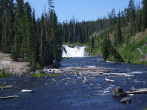 Lewis Falls in Yellowstone Park royalty free stock photography