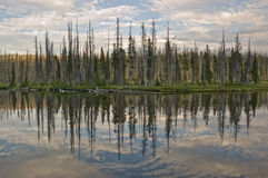 Lewis Lake Reflection stock photo