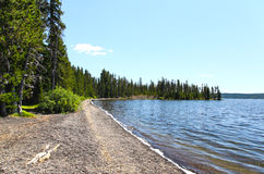 The Lewis Lake in the Yellowstone Royalty Free Stock Photos