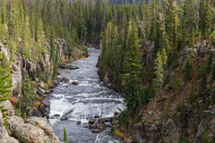 Lewis River Canyon Landscape Royalty Free Stock Images
